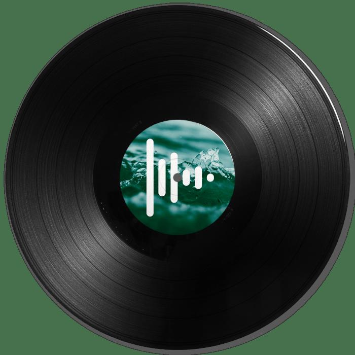 Discos de vinilo a medida Press Play Vinyl