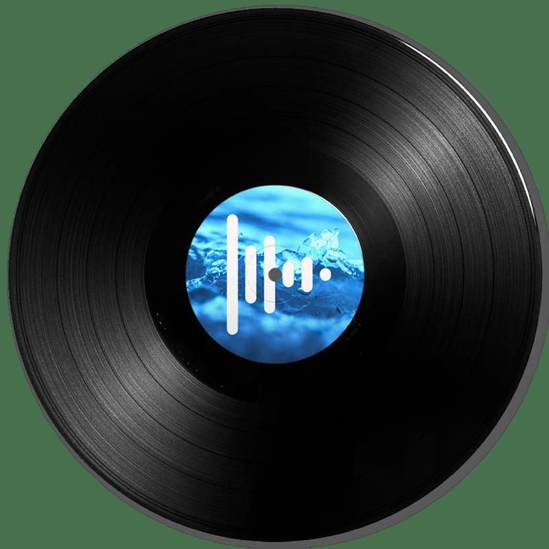 Discos de vinilo 12 pulgadas Press Play Vinyl